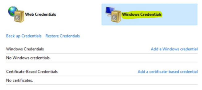 Windows Credentials in Project Centre | Wellingtone